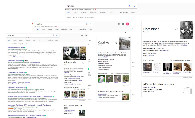 résultat recherche clade google