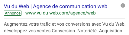 Annonce adwords search de l'agence Vu du Web